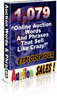 Thumbnail 1079 Auction Words & Phrases that Sell
