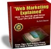Thumbnail Web Marketing Explained by 40 successful internet experts