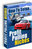 Thumbnail How To Setup Profit Pulling Niches